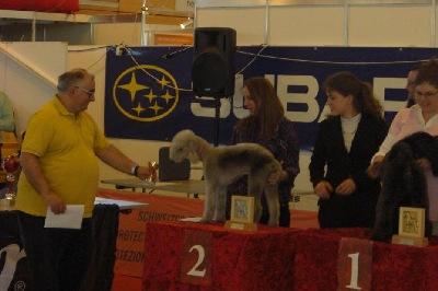 CH Meisterschaften 5.2.2011