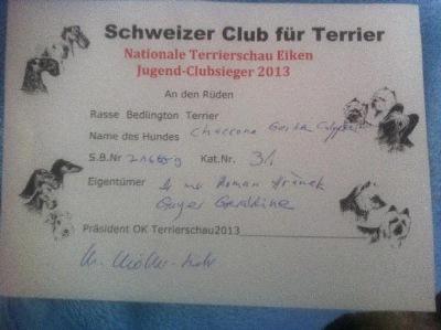 1 Jugend-Clubsieger Diplom Nationale Terrierschau in Eiken 30.6.13