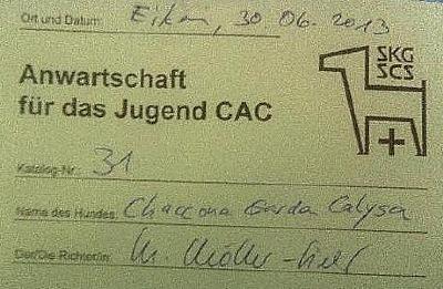 1 CAC vom 30.6.13 in Eiken.